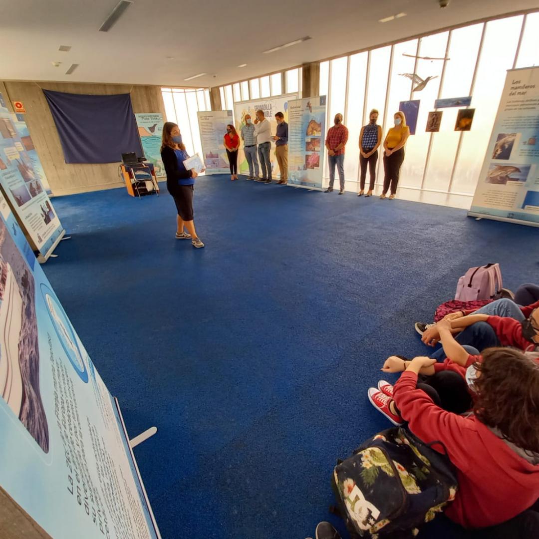 """Lee más sobre el artículo Inaugurada la exposición """"Tenerife, un mar para todos"""""""